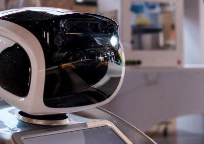ArtificialExpo98 - Robot Retail Bot - Grupo ADD